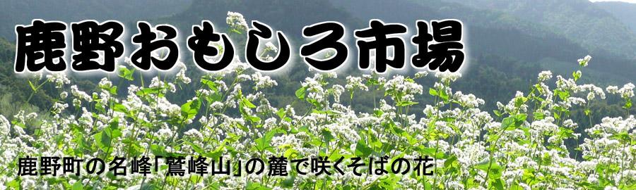 shikanoomoshiroichiba201103152341591.jpg